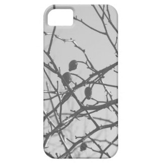 Gray Branches Pattern iPhone 5 Covers