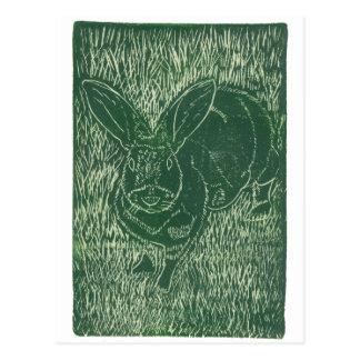 Gray Bunny Rabbit In The Grass Postcard