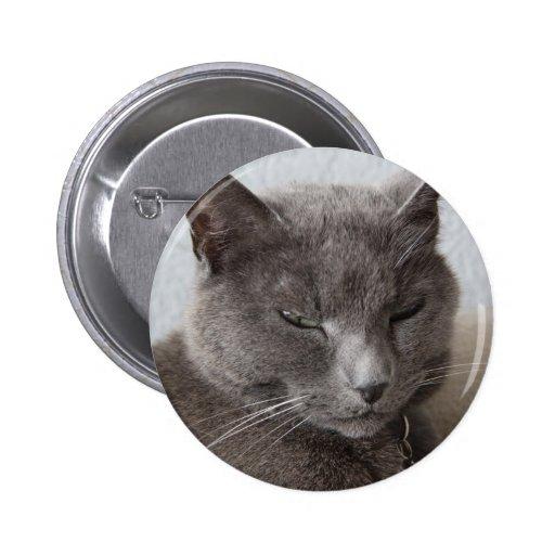 Gray cat pinback buttons