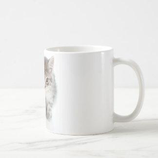 Gray Cat Basic White Mug