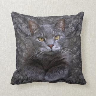Gray Cat Cushion