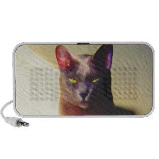 Gray cat doodle speakers