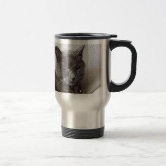 Gray cat mug