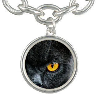 Gray Cat with Orange Eyes