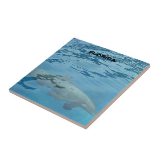 Gray dolphin swims underwater tile