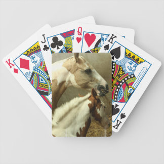 Gray Eventing Horse Deck of Cards