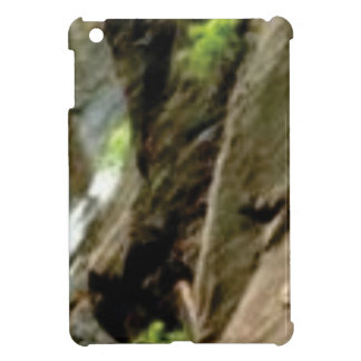 gray face of rock iPad mini cases