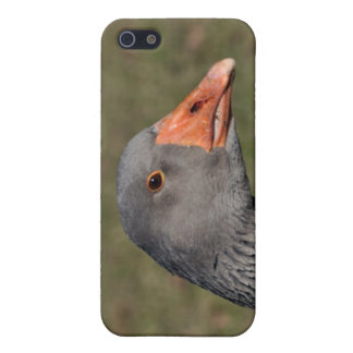 Gray goose iPhone 5/5S case