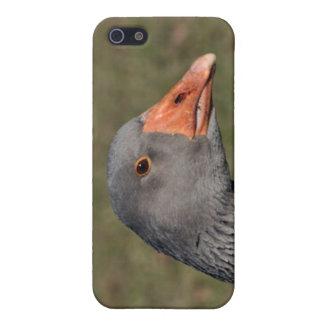 Gray goose iPhone 5/5S case