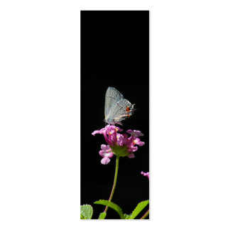 Gray Hairstreak Butterfly Bookmark Business Card Templates