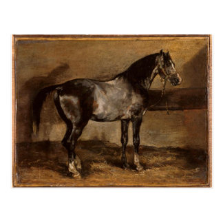 Gray horse rack by Theodore Gericault Postcard