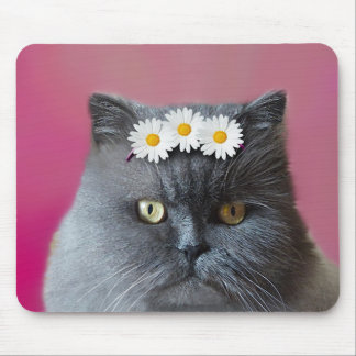 Gray Persian Cat with White Daisies Mouse Pad