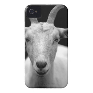 Gray Scale Photo of Goat iPhone 4 Case