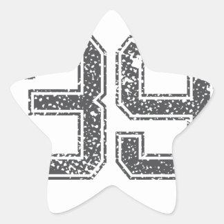 Gray Sports Jersey #39 Star Sticker