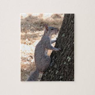 Gray Squirrel Climbing Tree Puzzle