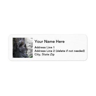 Gray Squirrel Return Address Label