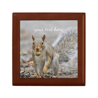 Gray Squirrel with acorn Gift Box