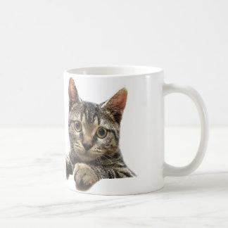 Gray Striped Tabby Cat Mug