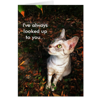 Gray Tabby Cat Greeting Card
