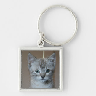 Gray Tabby Kitten Silver-Colored Square Key Ring