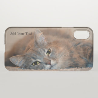 Gray, Tan, White Long-Haired Cat by Shirley Taylor iPhone X Case