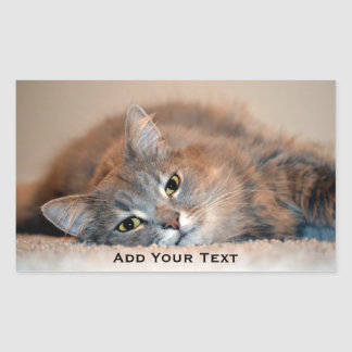 Gray, Tan, White Long-Haired Cat by Shirley Taylor Rectangular Sticker