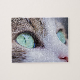 Gray Tiger Cat with Bright Green Eyes Jigsaw Puzzle