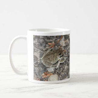 Gray Tree Frog Coffee Mugs