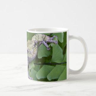 Gray tree frog on fern, Canada Coffee Mug