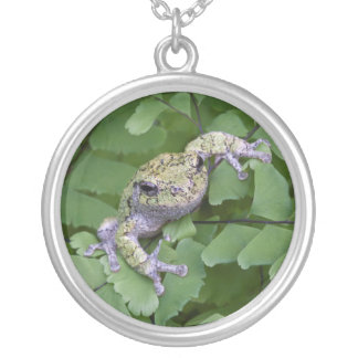 Gray tree frog on fern, Canada Silver Plated Necklace
