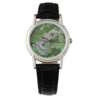 Gray tree frog on fern, Canada Wristwatch