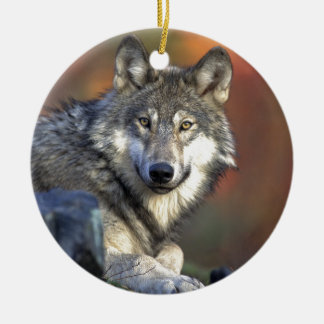 Gray wolf ceramic ornament