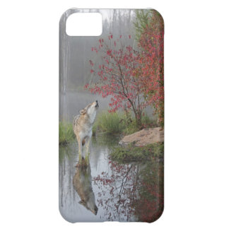 Gray Wolf iphone5 case