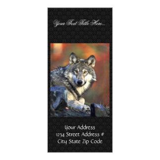 Gray wolf rack card