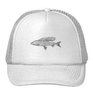 Grayling Fish Cap
