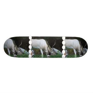 Grazing Addax Skateboard