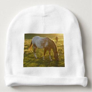 Grazing Appaloosa Horse Baby Beanie