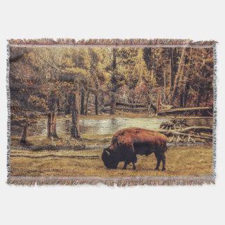 Grazing Buffalo Throw Blanket
