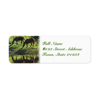 Grazing Horse Pair Mailing Label
