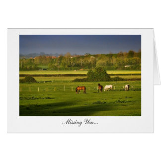 Grazing Horses / Ponies - Missing You Greeting Card