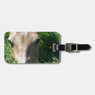 Grazing In The Grass Luggage Tag