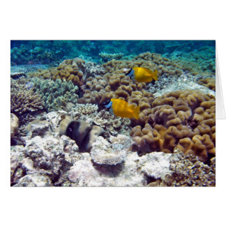 Great Barrier Reef Card