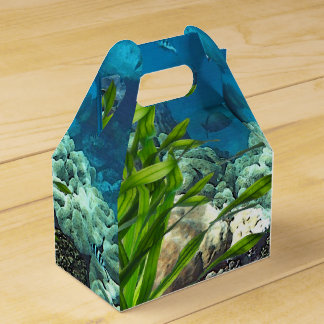 Great Barrier Reef Favour Box