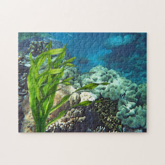 Great Barrier Reef Jigsaw Puzzle