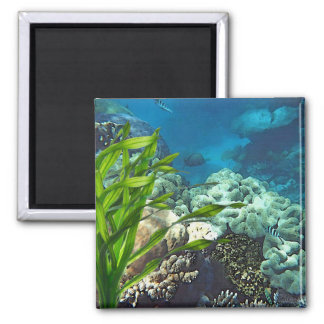 Great Barrier Reef Magnet