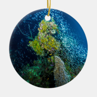 Great Barrier Reef Tropical Fish Coral Sea Round Ceramic Decoration