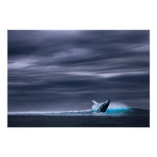 Great Big Ocean & Whale | Poster Print