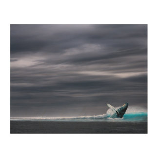 Great Big Ocean & Whale | Wood Panel Print