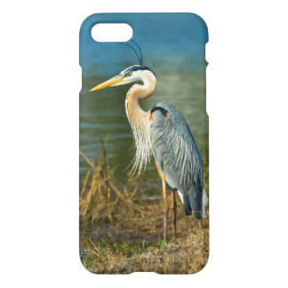 Great Blue Heron at the Pond iPhone 7 Case