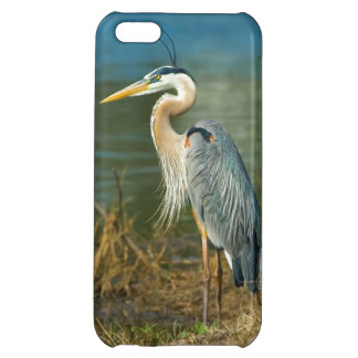 Great Blue Heron at the Pond iPhone 5C Covers
